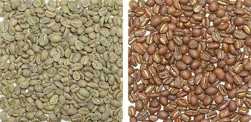エチオピア豆の画像