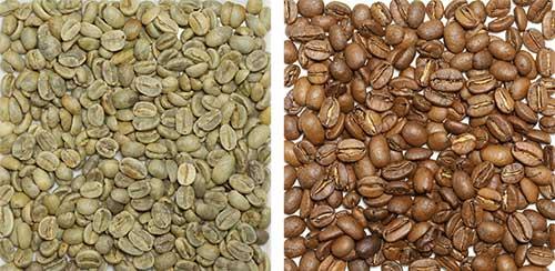 ガテマラ豆の画像