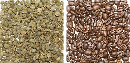 インドネシア豆の画像
